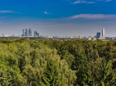 7 Комнаты, Городская, Продажа, Улица Староволынская, Listing ID 2921, Москва, Россия,